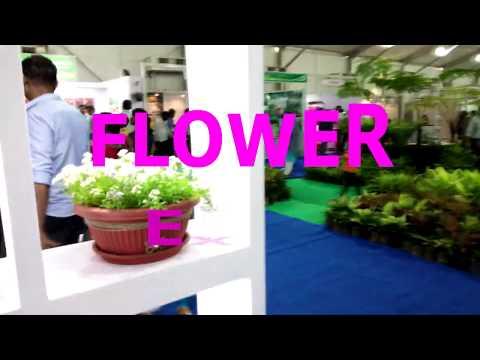 Pune Flower Expo Visit