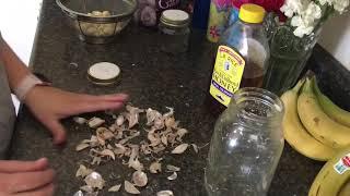 Preparing Fermented Honey & Garlic Cloves   In the Kitchen   JessicaLeighann