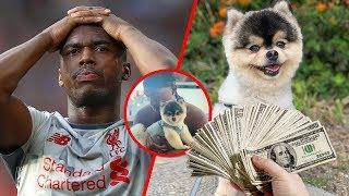 Robaron su perro y mucho dinero, Sturridge ofreció GRAN RECOMPENSA para recuperarlo y esto pasó