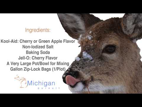 The BEST Mineral Attractant for Deer: Under $20!