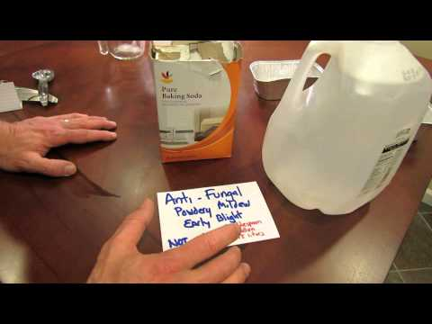 For New Gardeners: How to Make a Baking Soda Anti-Fungal Garden Spray - MFG 2014