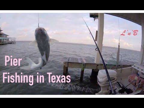Catching Croaker and Avoiding Catfish.