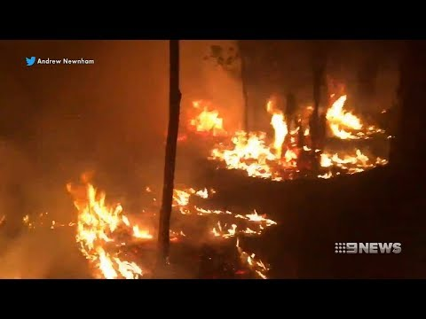 Albany Fire | 9 News Perth