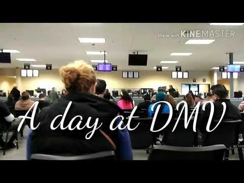A day at dmv