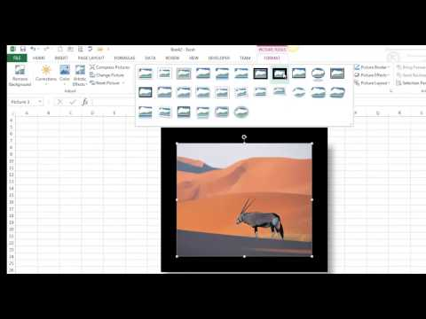 Insert and Format Pictures / Online Pictures / Clip Art in Excel 2013