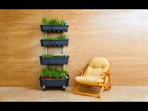 How to make a Garden in house?