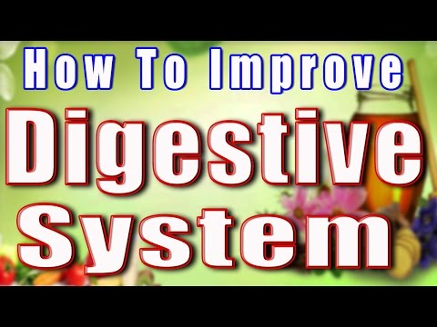 How to Improve digestive system II पाचन तंत्र को स्वस्थ बनाये II