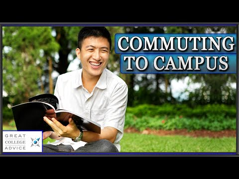 Commuting to Campus: Admissions Expert on the University of Miami