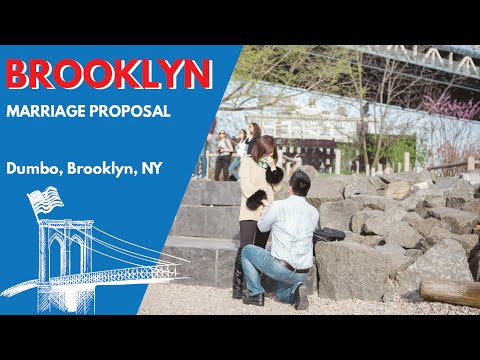 Sweetest couple proposal of 2016. Violinist playing under the Brooklyn bridge.