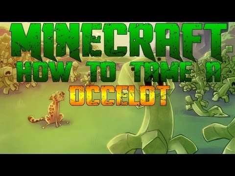 Minecraft Xbox 360: How to tame/make a Ocelot your pet!