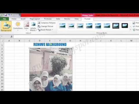 MS Excel : REMOVE BACKGROUND & SCREENSHOT by.choco