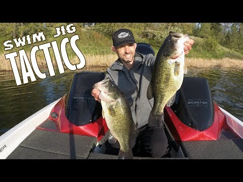 Pre-spawn Swim Jig Tactics and Tips for Largemouth Bass