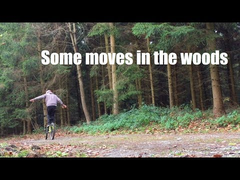 Some moves in the woods