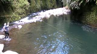 Fly fishing in some of the best trout fishing water I have ever seen!