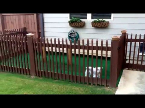 BACKYARD DOG KENNEL IDEA!!!! EASY DIY