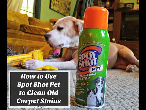 How to Use Spot Shot Pet to Clean Old Carpet Stains