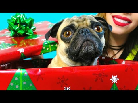 Christmas Pranks You NEED To Try On Friends & Family!