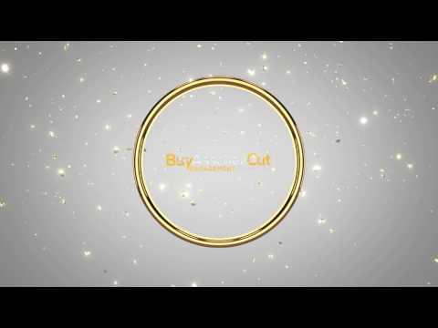 Jewellery Video Intro Animated Logo Design