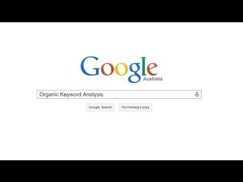 Organic keywords analysis