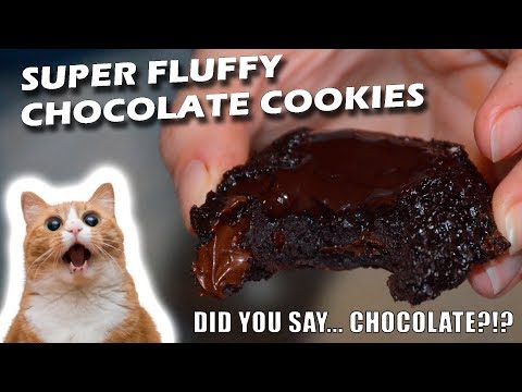 Super Fluffy Chocolate Cookies in Less than 30 minutes (Low Sugar)