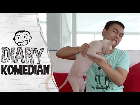 Diary Komedian - Kucing Kucing Peliharaan