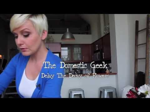 The Domestic Geek: Delay the Decay of Cut Flowers!