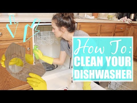 How to DEEP CLEAN your Dishwasher || The Simple Life || Allie Gooch