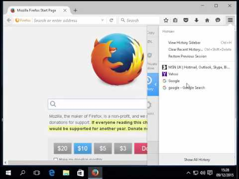 Firefox View and Delete History