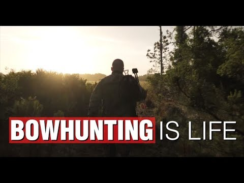 Stay Calm. Pick a Spot - The Bowhunting Lifestyle