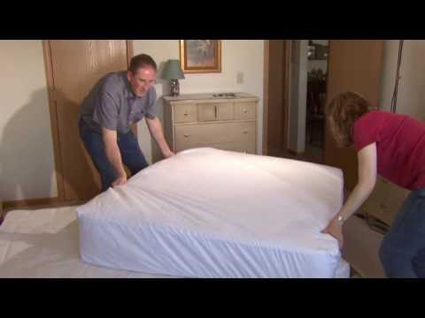 How to Prevent Bed Bugs from Infesting a Bed