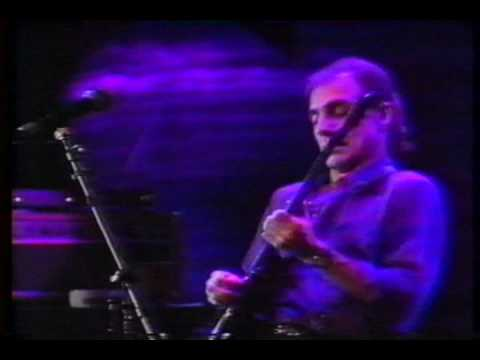 Larry Carlton - Solos (Hill Street Blues / Kid Charlemagne / Don't Take Me Alive / and...)