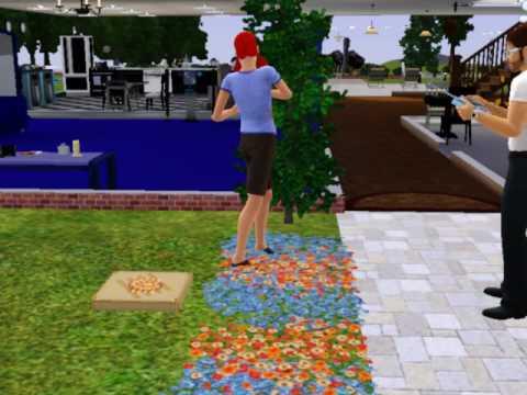 Sims 3- Sim Disappearing