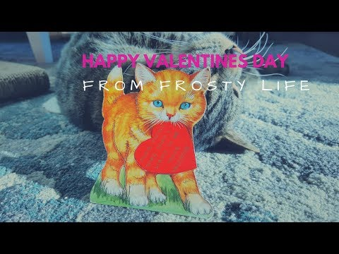 Cats and Vintage Valentine's Day Cards Vlog