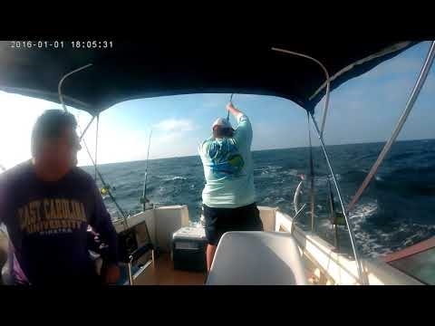 King Mackerel Fishing Emerald Isle, NC
