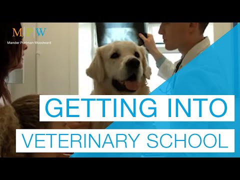 Advice On Getting Into Vet School