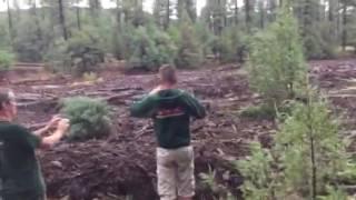 Flash flood 7/15/2017 Payson - Ellison Creek