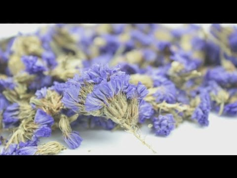 Mass Appeal How to use lavender for cooking, potpourri & first aid