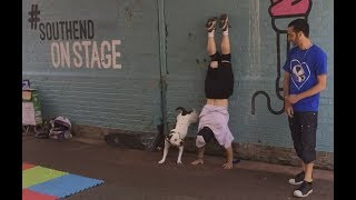 Breakdancing dog street performance!