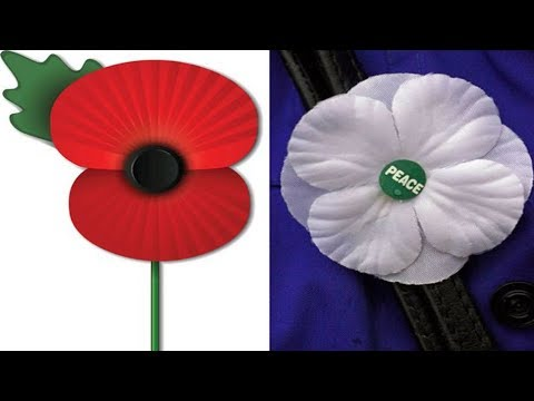 Do you HAVE to wear a Poppy? (Remembrance Day)
