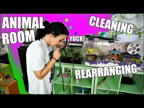 ANIMAL ROOM CLEANING & REARRANGING MY PET ROOM!