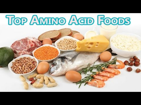 Foods High in Amino Acids & Protein Diet to Build & repair muscles