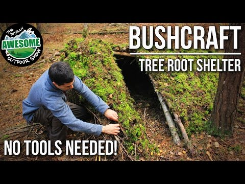 Bushcraft Shelters - Tree Root Shelter with no tools | TA Outdoors