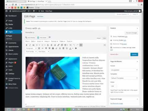 Disabling WordPress menu items