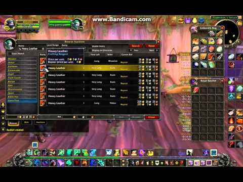Location of Auction House: Darnassus and Run-through of Auctioning (World of Warcraft)