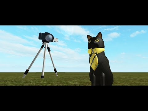 SIR MEOWS A LOT HAS HIS OWN CHANNEL!!