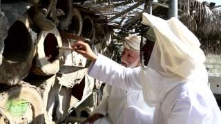 العسل العماني بين الطرق التقليدية والحديثة بوادي بني عوف - ولاية الرستاق