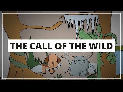 THE CALL OF THE WILD BY JACK LONDON // ANIMATED BOOK SUMMARY