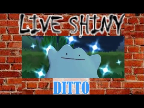 (Shiny Grass) Live Shiny Ditto Catch In Pokemon X After 41 Chains via PokeRadar Chaining