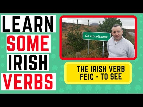 How to talk in Irish - the verb Feic - to see