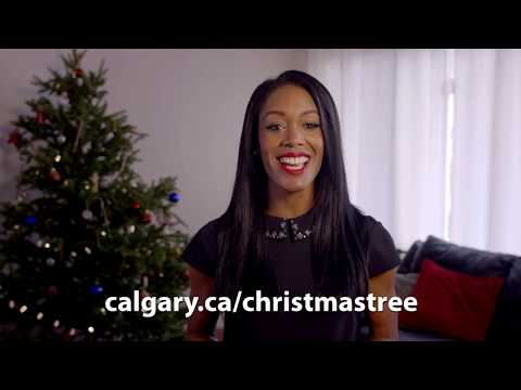 Christmas Tree Composting - Report to Calgarians